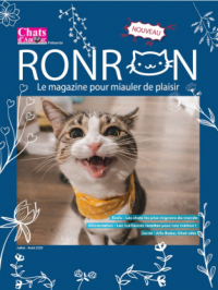 Chats d'Amour | .